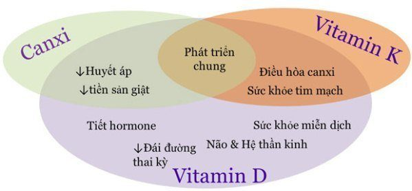 canxi vitamin