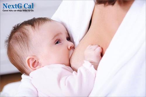Cách chữa rụng tóc vành khăn ờ trẻ em
