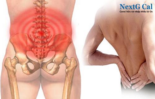 Bệnh viêm khớp vùng chậu ở nam giới