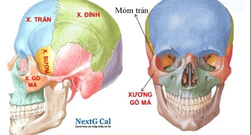 Bệnh án gãy xương gò má cung tiếp trái