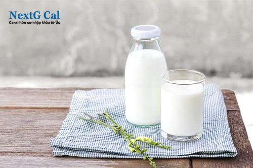 Sữa bổ sung canxi cho tuổi dậy thì