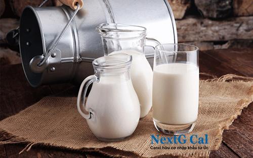 Sữa bổ sung canxi cho người gãy xương