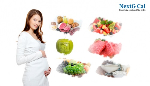 dinh dưỡng 3 tháng giữa thai kỳ